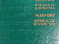 Cara bikin e-paspor