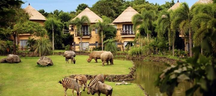 [Adv] Bobo sama zebra, makan sama singa… di Bali!