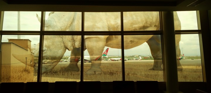 Nggak Sengaja ke Kenya