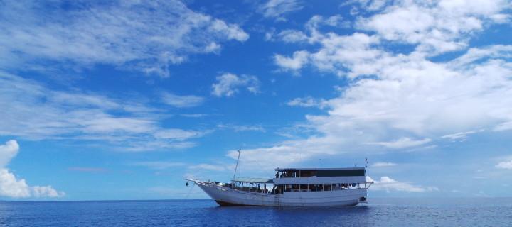 Ekspedisi WWF ke Pulau Koon