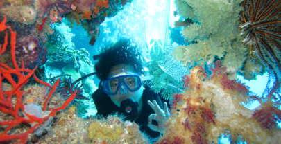 5 situs diving favorit di Indonesia