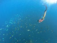 Deg-Degan Sekolah Freediving