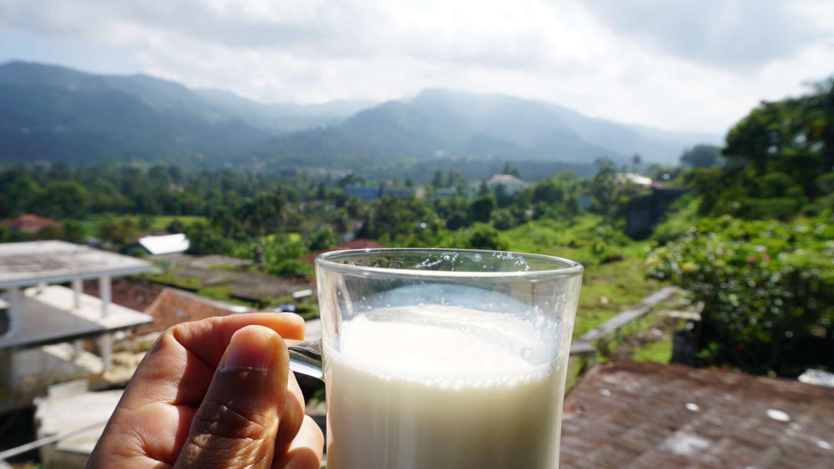 Jalan-Jalan dan Makan-Makan di Cimory