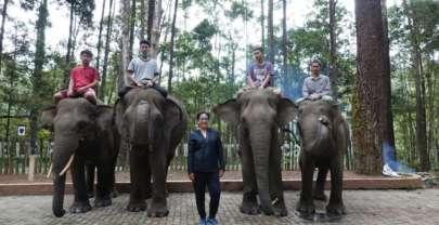 Salim sama Luis Figo, si gajah Sumatera